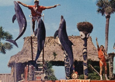 Dolphin Performance at Floridaland